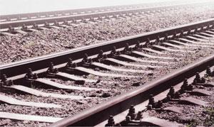 Какие бывают варианты железнодорожных шпал?